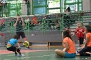 4° concentramento MINIVOLLEY e UNDER 12-239