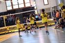 3° concentramento MINIVOLLEY BASELGA DI PINÉ 24-mar-2019-15