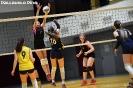 U18 PALLAVOLO PINÉ - BERSNTOL 23-mag-2019-239
