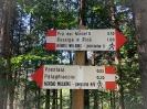 SUMMER VOLLEY CAMP 2020 - Giro ai 2 laghi di Pinè-14
