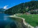 SUMMER VOLLEY CAMP 2020 - Giro ai 2 laghi di Pinè-4